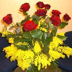rose-rosse-con-mimosa