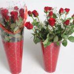 12 rose cono