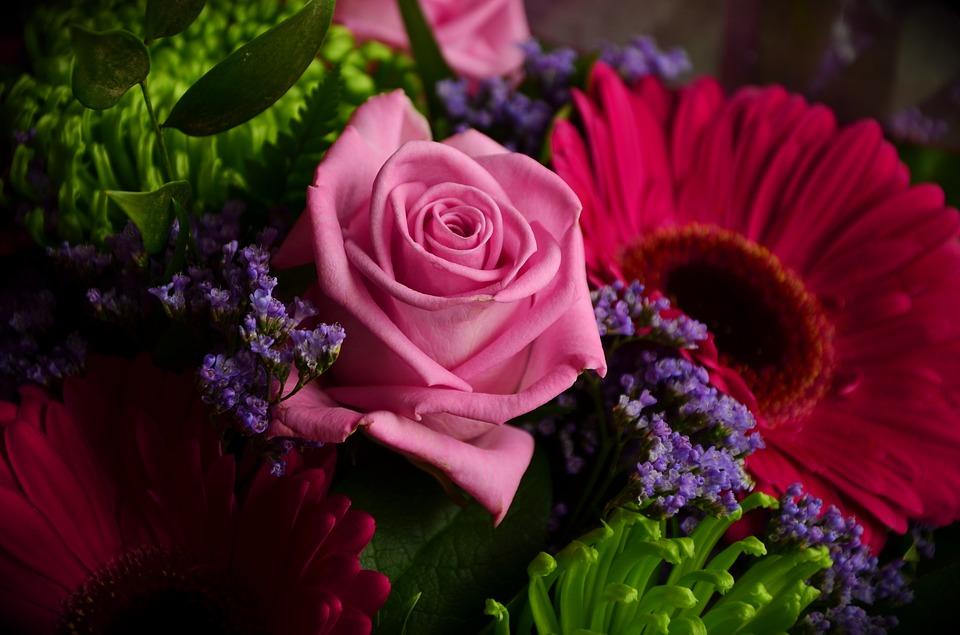 rose-1378053_960_720
